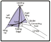 Kite Diagram