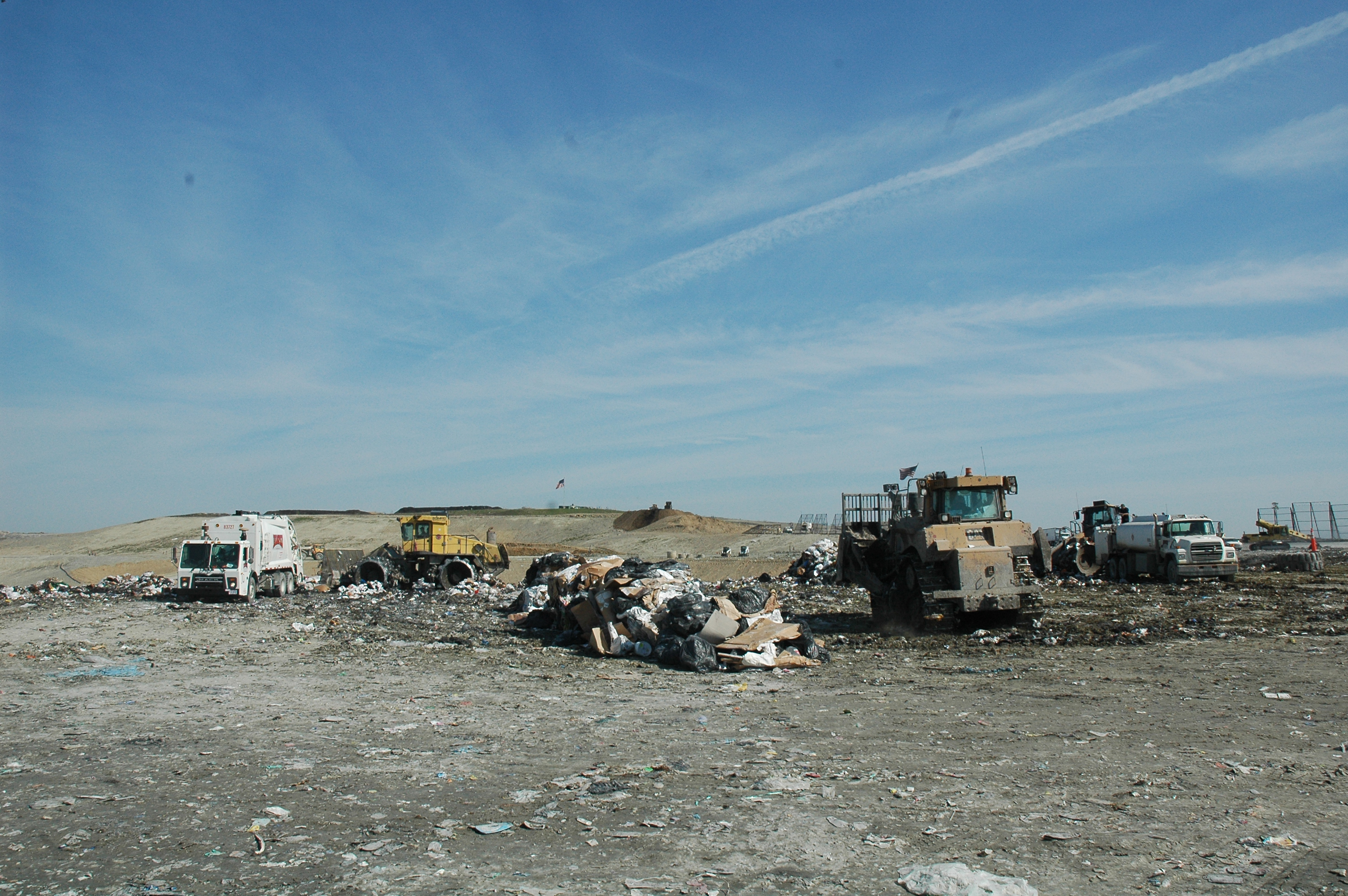 A Landfill is an Ecosystem unto Itself: a Treatise on the
